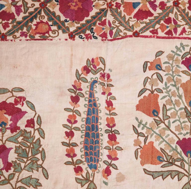 Cotton 19th Century Antique Uzbek Nurata Suzani For Sale