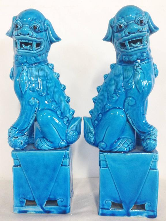 Foo Dogs With Large Eyes