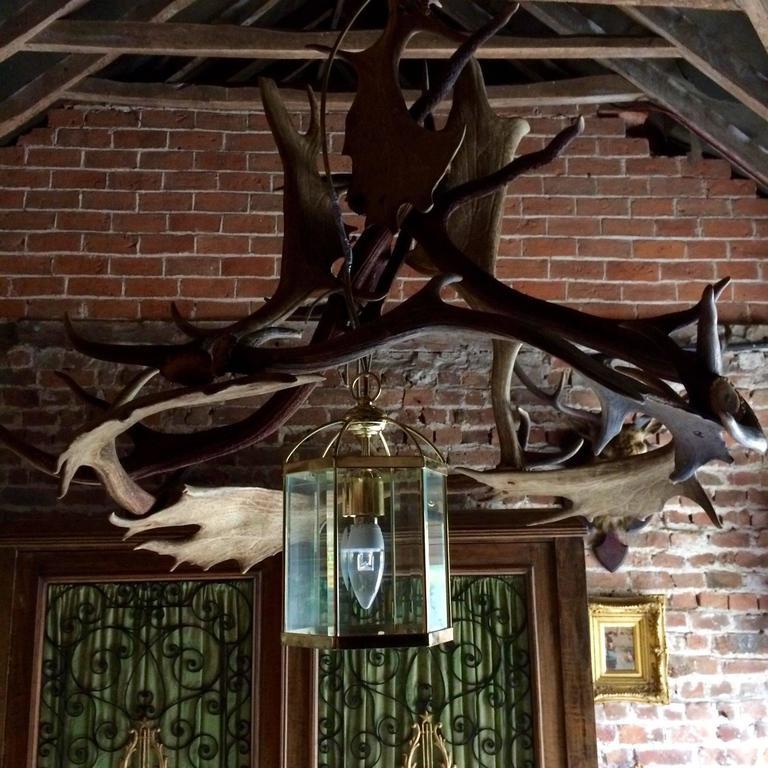 Deer Antler Chandelier Light Taxidermy Large Single Porch