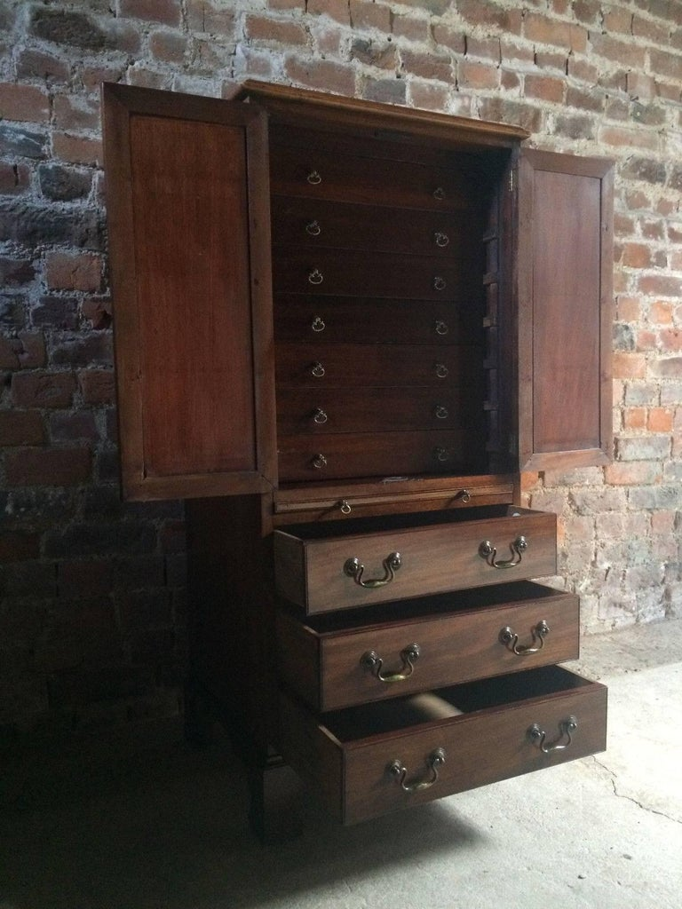 Antique Collectors Cabinet Chest Mahogany Victorian 19th Century, circa 1875 For Sale 1