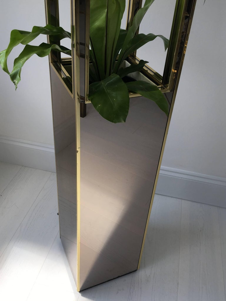 1970s Smoked Mirrored Pedestal Lamp And Plant Stand For