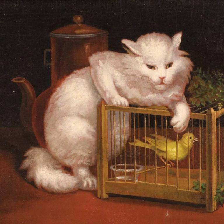 Great decorative painting, Netherlands, early 20th century. Work oil on canvas depicting particular still life with cat and bird. Modern gilded wooden frame. Painting of great measure and decoration, in good state of conservation. Sight size: H 70.5