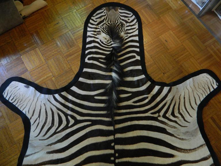 Grade A Equus Burchell Zebra Skin Rug With Felt Backing At