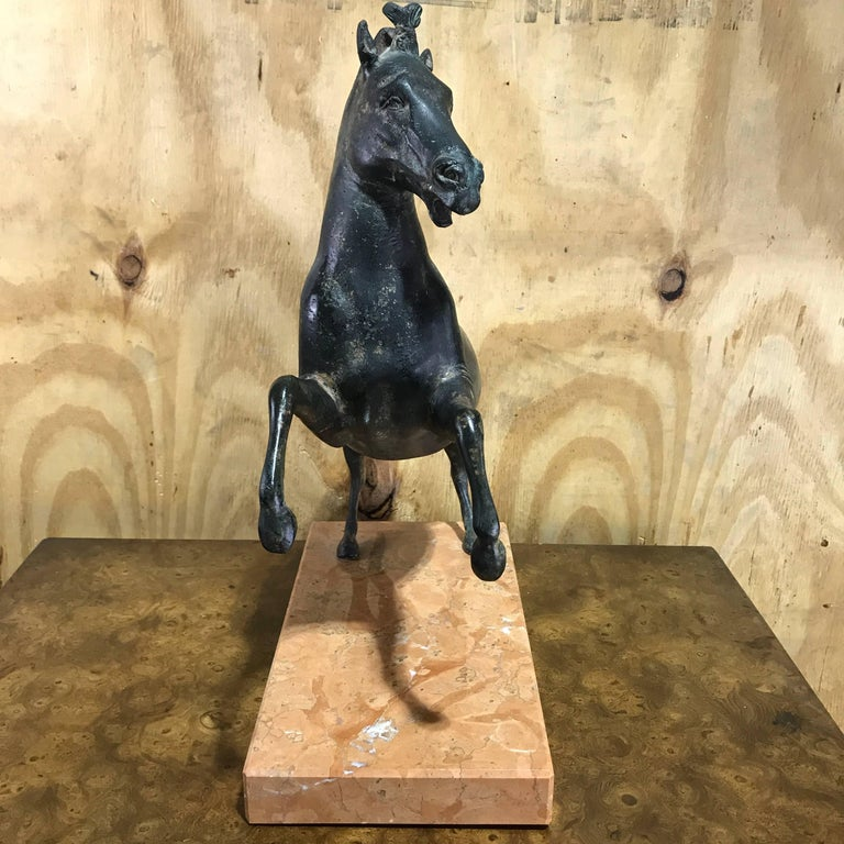 Italian Grand Tour Bronze Sculpture of a Rearing Horse For Sale