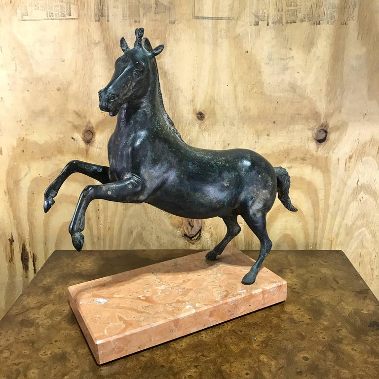 Grand Tour Bronze Sculpture of a Rearing Horse For Sale 3