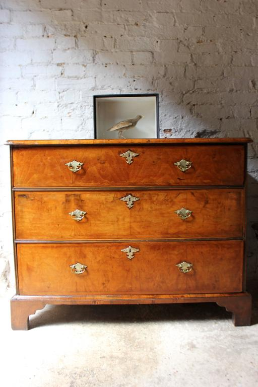 delightful queen anne period walnut chest of drawers