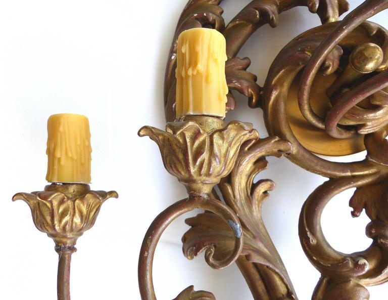 Antique Art Nouveau Carved Giltwood Sconces, Pair For Sale at 1stdibs