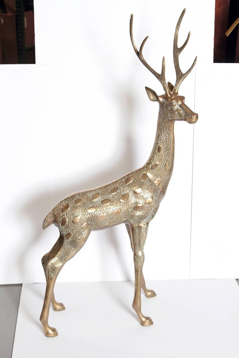 20th Century Life-Size Brass Deer Sculpture For Sale