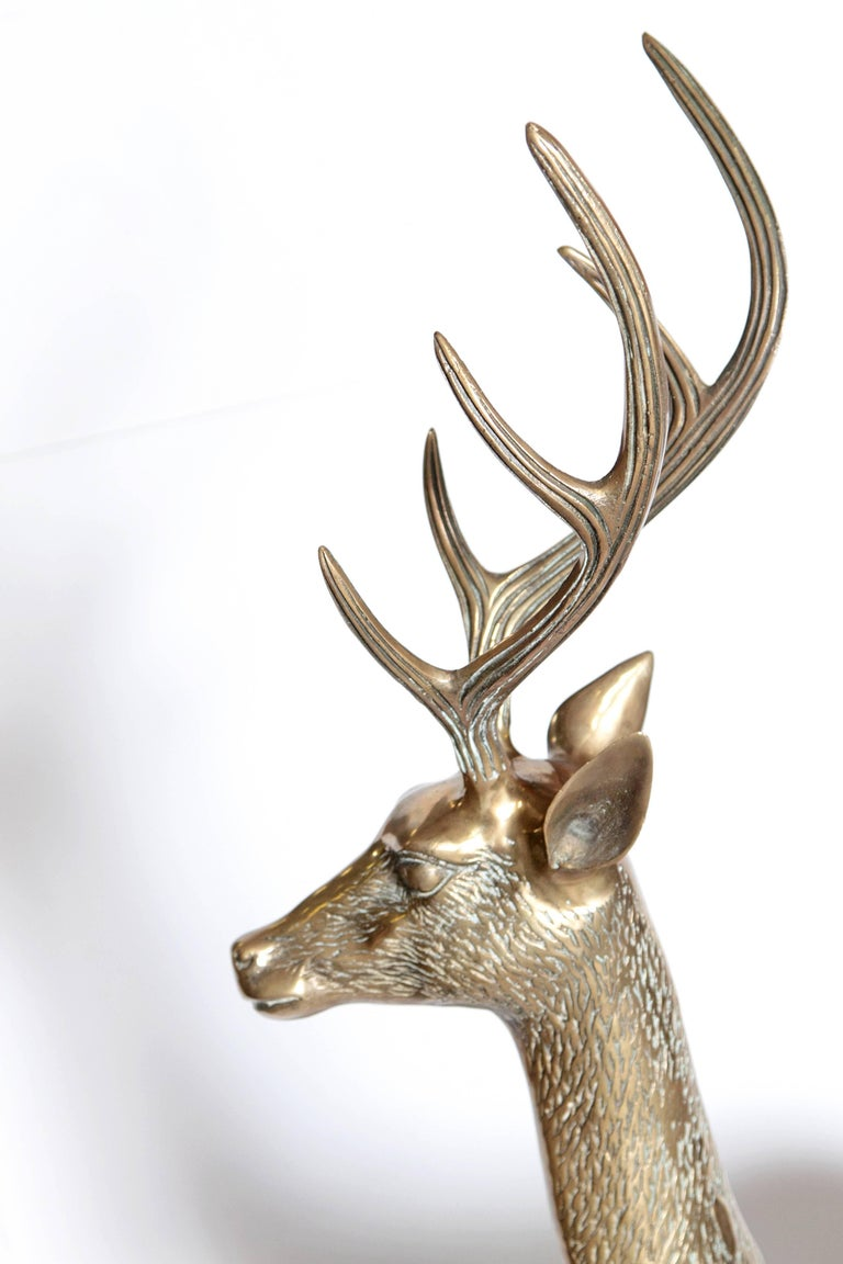 Life-Size Brass Deer Sculpture For Sale 1