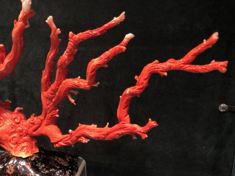 Very Large Antique Qing Dynasty Carved Coral Chinese, circa 1870 4
