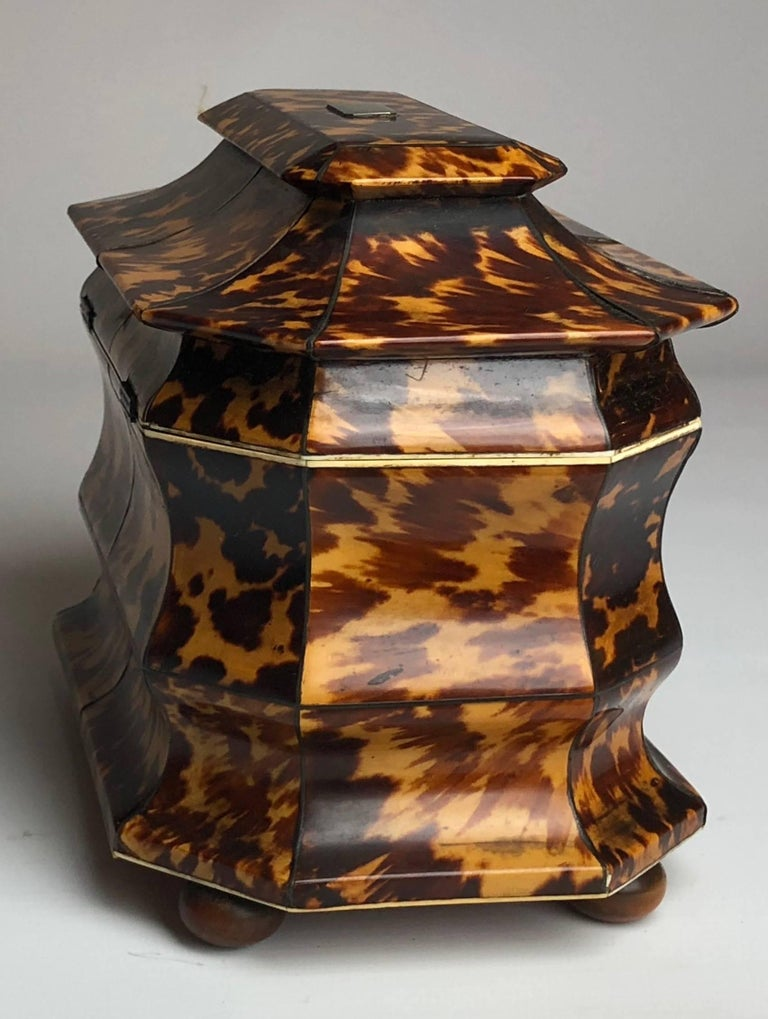 Regency Blonde Tortoiseshell Tea Caddy with Pagoda Top, circa 1820 4