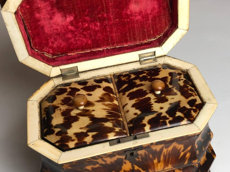 Regency Blonde Tortoiseshell Tea Caddy with Pagoda Top, circa 1820 9