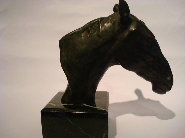 Art Nouveau Fantastic Detailed Horse Bust Bronze Sculpture Signed U. Rossi, 1917 For Sale