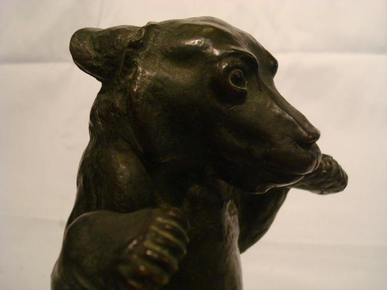 Early 20th Century Young Bear Bronze Figure For Sale