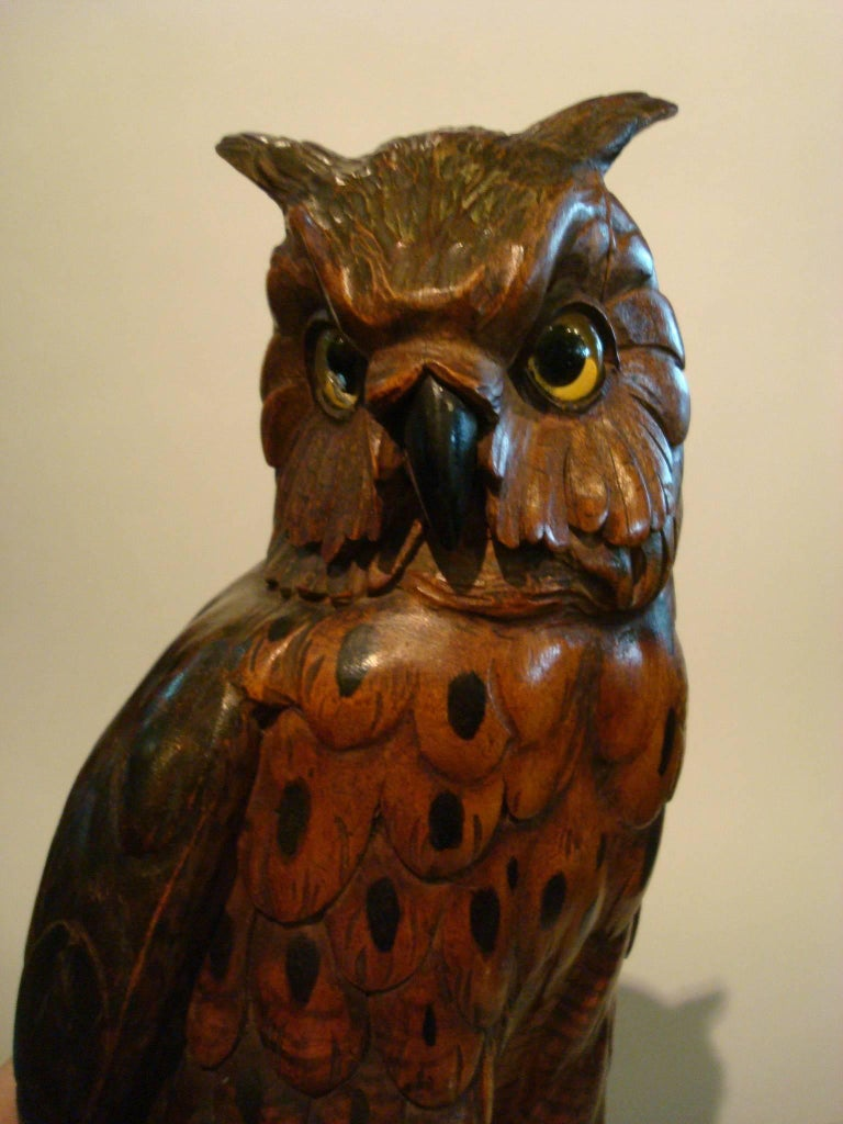 Black forest wooden carved owl over books germany s