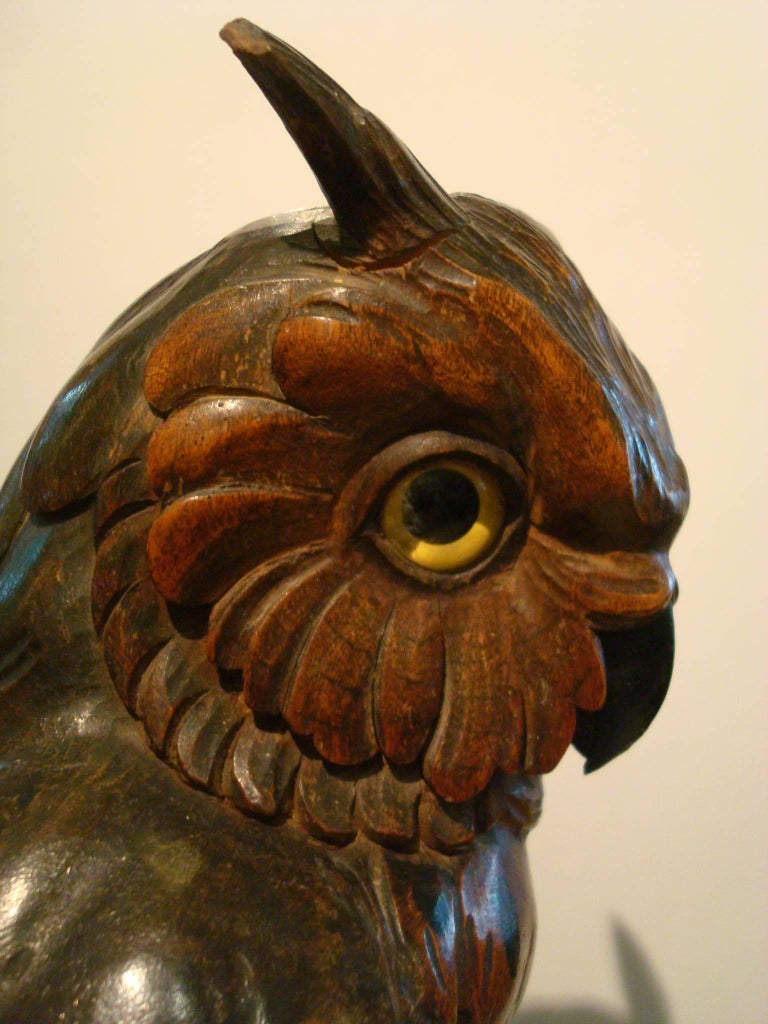Black forest wooden carved owl over books germany 1890s for sale