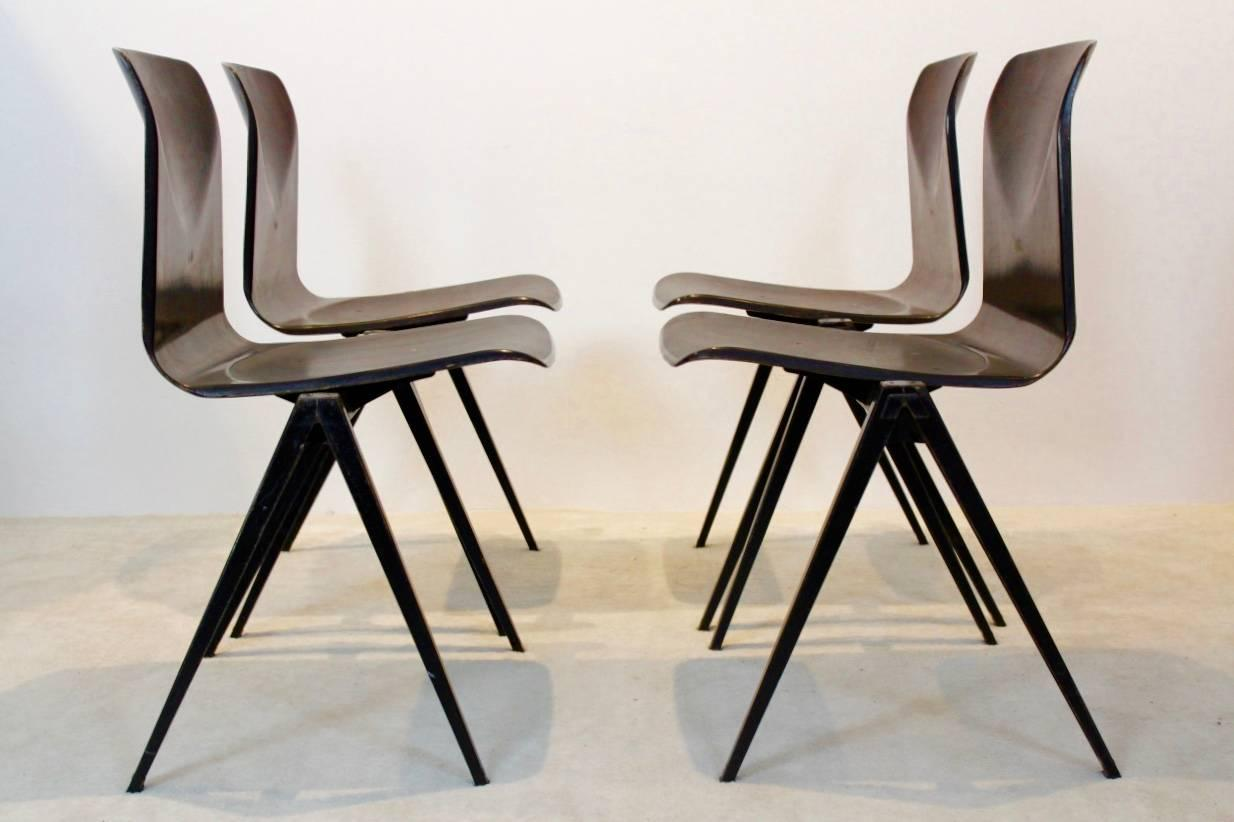 Wengé Stackable Pagholz Galvanitas S22 Industrial Diner Chairs, 1960s 3