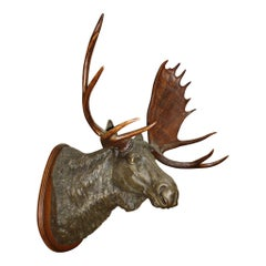 Bronze Moose with Antlers on Walnut Wall-Mount Plaque
