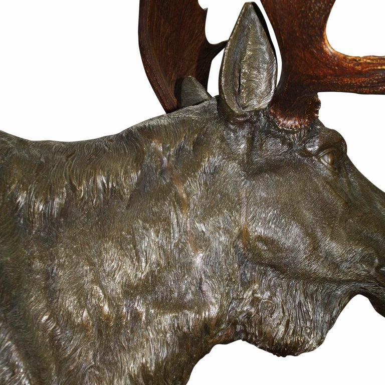 Bronze Moose with Antlers on Walnut Wall-Mount Plaque For Sale 1
