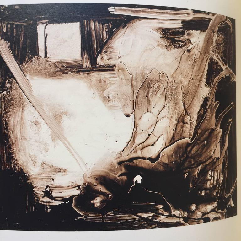 Late 20th Century Sigmar Polke, Illumination Book For Sale