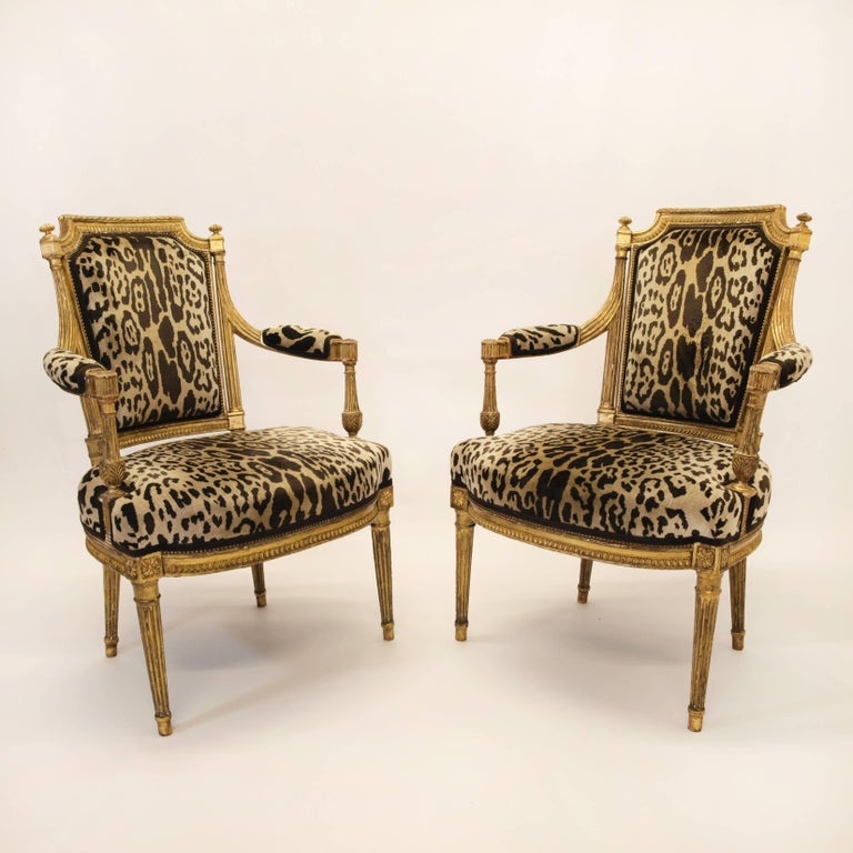 A very fine pair of Louis XVI chairs attributed to  Jean Baptiste Claude Sene Parisian Master Carpenter circa 1780. Hand-carved in moulded and gilded wood, these chairs have a shield shaped back with a twisted and curved arm and arm rest cuffs that