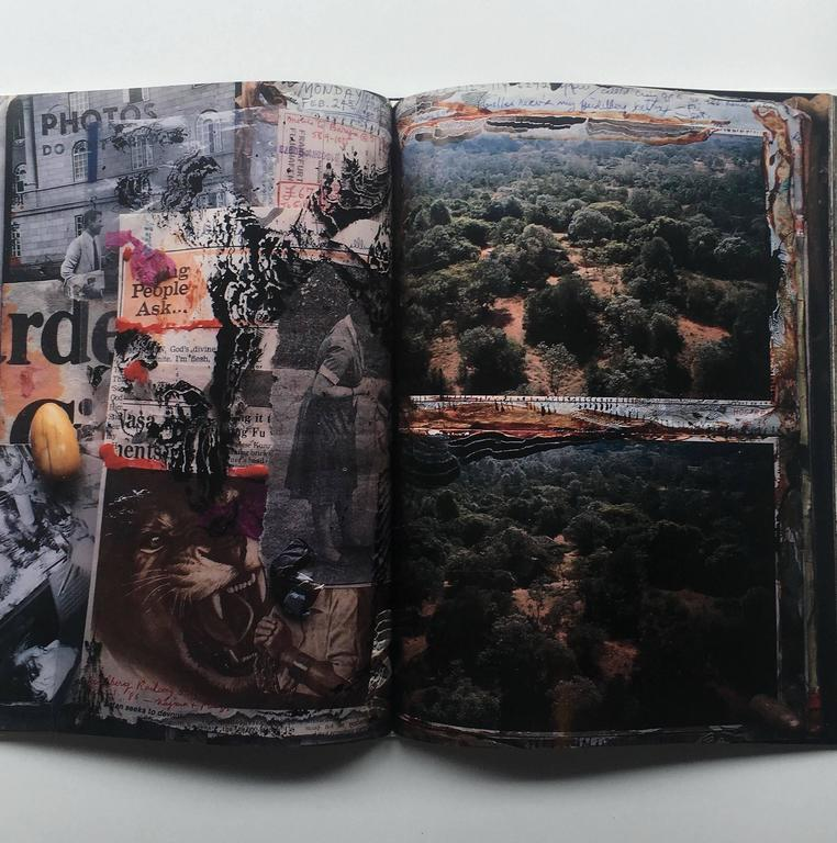 Japanese Diary Peter Beard 1st edition 1993 For Sale