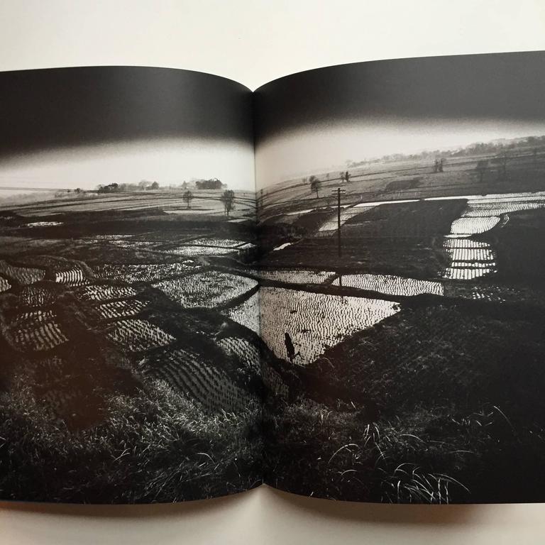 Japanese Eikoh Hosoe Kamaitachi Book For Sale