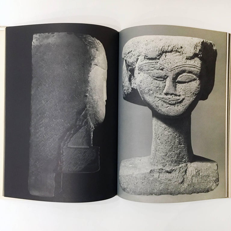 American Modigliani the Sculptor, Book For Sale