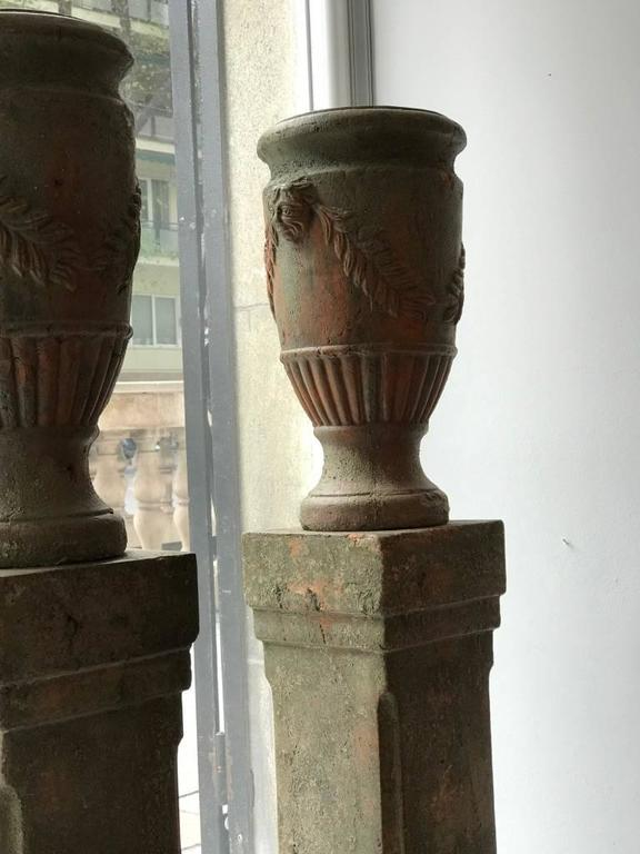 French Pair of Terracotta Urns on Plinths, 19th Century 6