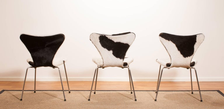 1950s, Cow Fur Leather Model 3107 Dining Chairs by Arne Jacobsen & Fritz Hansen 3