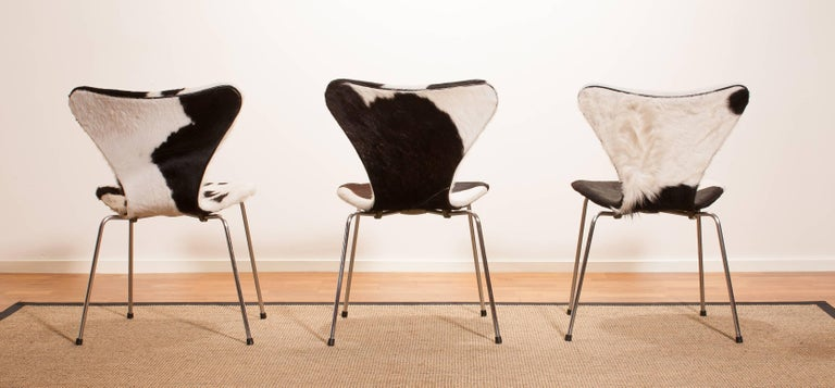 1950s, Cow Fur Leather Model 3107 Dining Chairs by Arne Jacobsen & Fritz Hansen 5