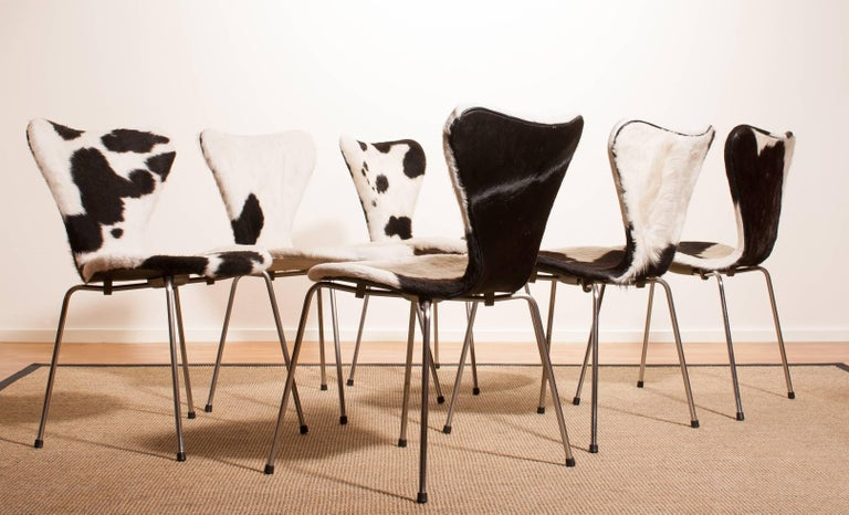1950s, Cow Fur Leather Model 3107 Dining Chairs by Arne Jacobsen & Fritz Hansen 9