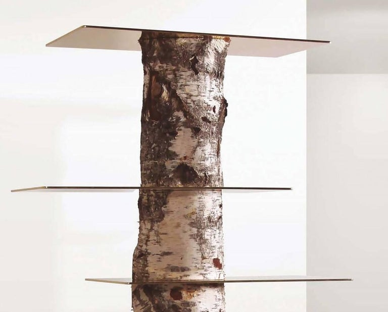An elegant bookcase designed by Andrea Branzi and produced by Superego Editions in 2013. The structure of the library is made up from a tree trunk (Birch) with solid brass tops.  Biography Branzi was born in Florence where he also graduated in