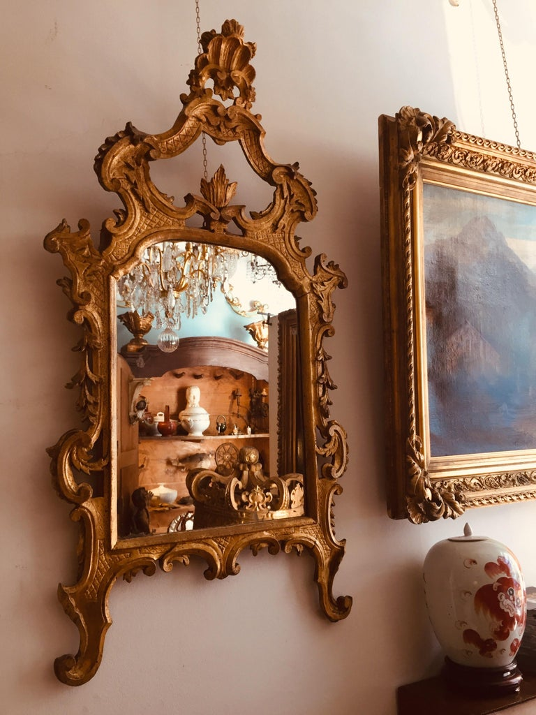 Italian 18th Century Louis XV Mirror Carved Gilt Wood Tuscan Mirror from Lucca For Sale 10