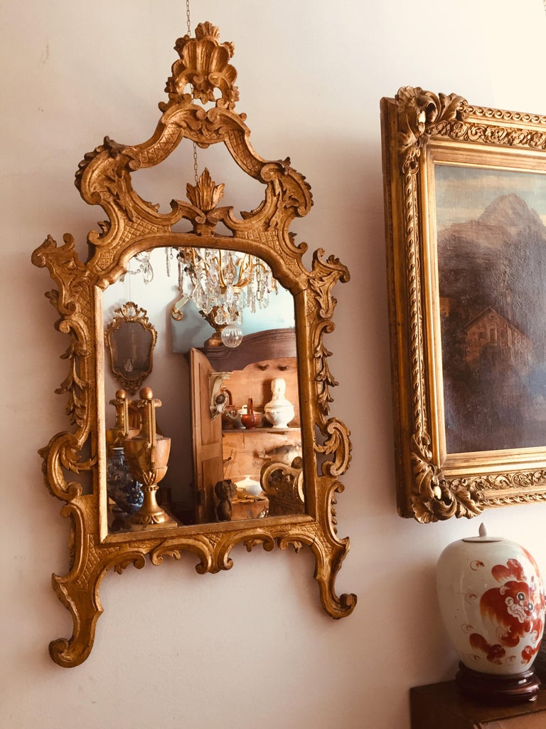 Italian 18th Century Louis XV Mirror Carved Gilt Wood Tuscan Mirror from Lucca For Sale 9