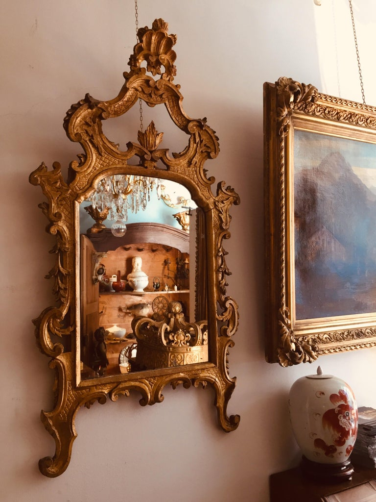 Italian 18th Century Louis XV Mirror Carved Gilt Wood Tuscan Mirror from Lucca For Sale 11