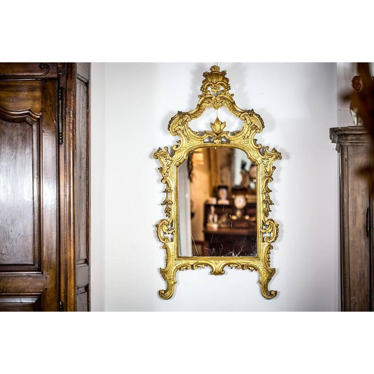 Italian 18th Century Louis XV Mirror Carved Gilt Wood Tuscan Mirror from Lucca In Good Condition For Sale In Milan, IT