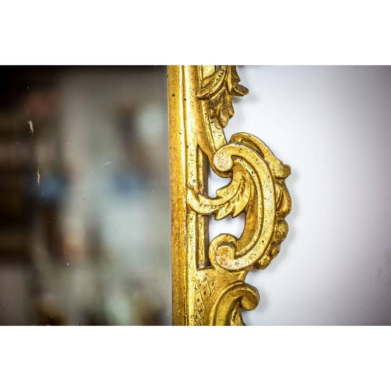 Italian 18th Century Louis XV Mirror Carved Gilt Wood Tuscan Mirror from Lucca For Sale 2