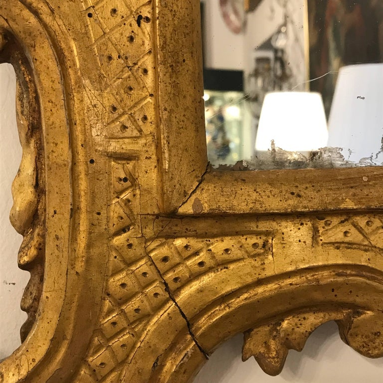 Italian 18th Century Louis XV Mirror Carved Gilt Wood Tuscan Mirror from Lucca For Sale 4