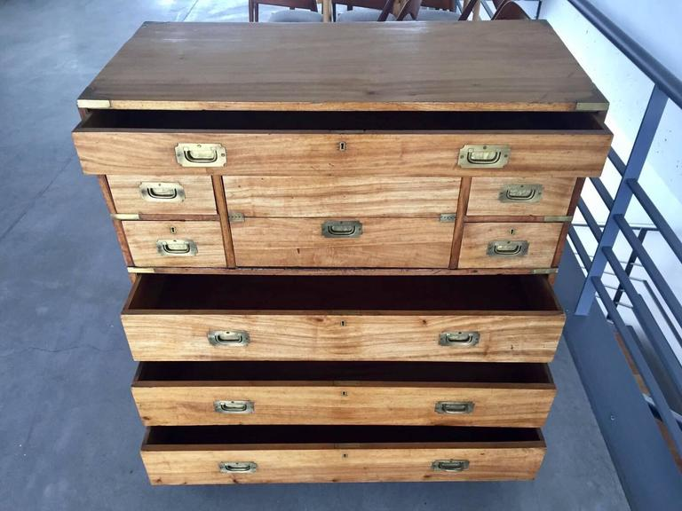 19th Century Camphorwood Campaign Chest with Brass Details For Sale 1