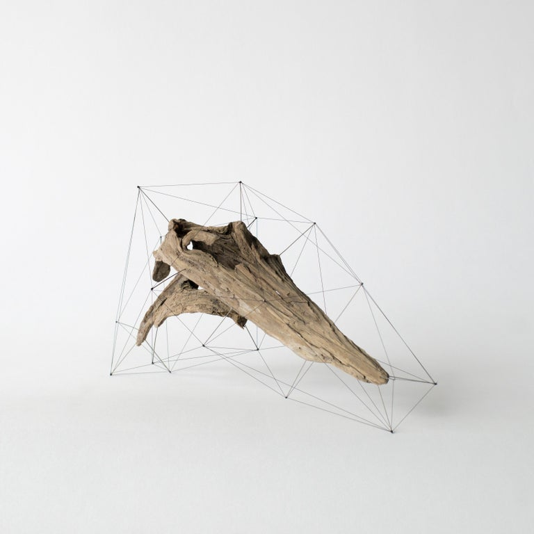 Handmade object made of drift wood, pins and threads. Pins stuck in drift wood, where their tips are tied with threads. It looks like an another crust outside the drift wood, or the three dimensional specimen.  Artist statement: Driftwood has