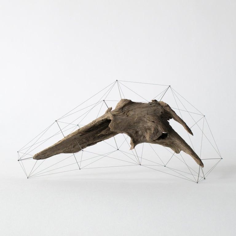 Minimalist Crust of the Polygon 03 Norihiko Terayama Driftwood Sculpture For Sale