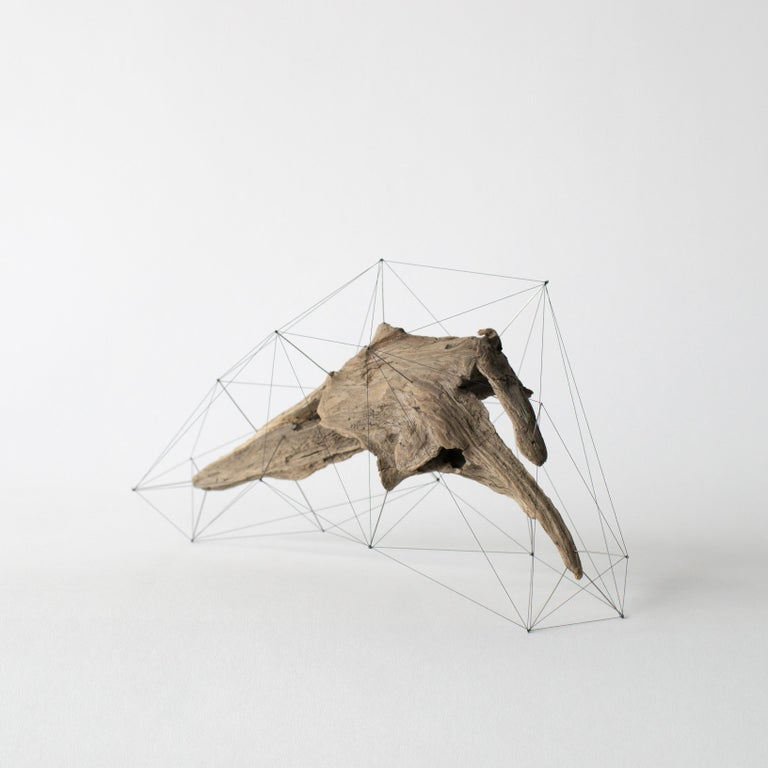 Japanese Crust of the Polygon 03 Norihiko Terayama Driftwood Sculpture For Sale