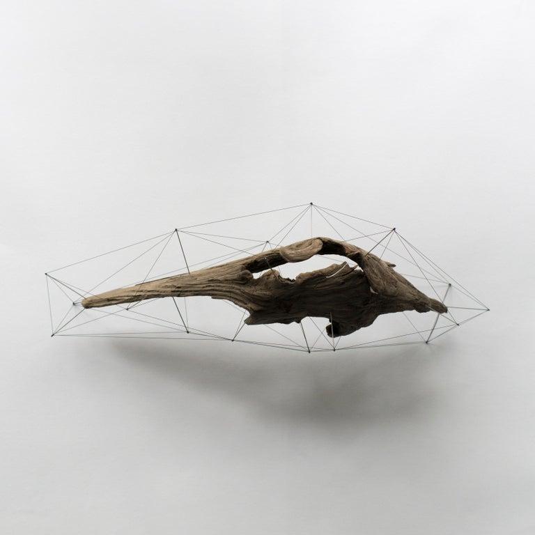 Crust of the Polygon 03 Norihiko Terayama Driftwood Sculpture In New Condition For Sale In Shibuya-ku, Tokyo