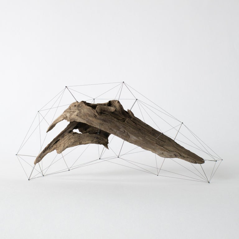 Contemporary Crust of the Polygon 03 Norihiko Terayama Driftwood Sculpture For Sale