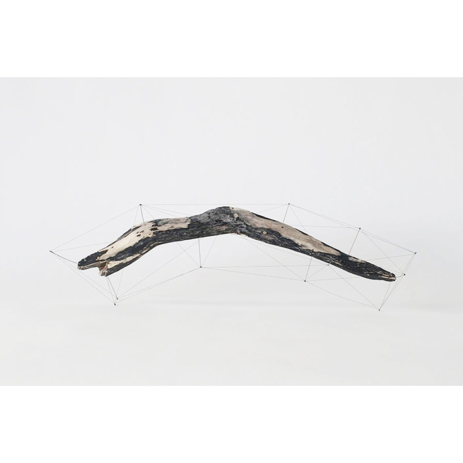 Crust of the Polygon 05 Norihiko Terayama Driftwood Sculpture