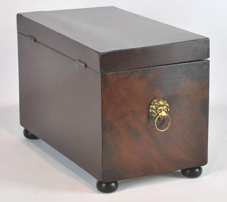 19th Ct. Regency Style English Mahogany Jewel Box 3