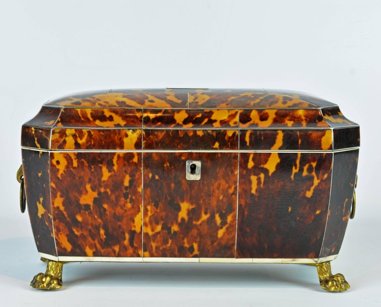 Superior Early 19th Century Georgian Tortoiseshell Tea Caddy on Lion's Paw Feet 2
