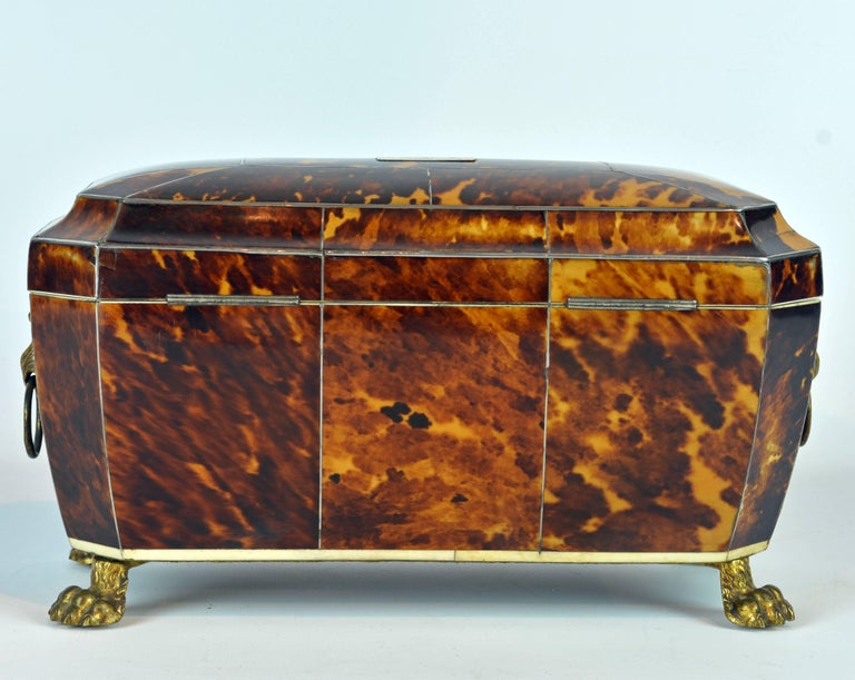 Superior Early 19th Century Georgian Tortoiseshell Tea Caddy on Lion's Paw Feet 4