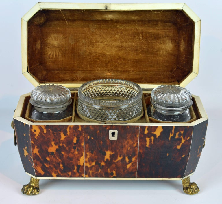 Superior Early 19th Century Georgian Tortoiseshell Tea Caddy on Lion's Paw Feet 5